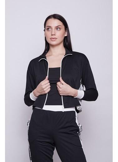 Jument Kadın Fermuarlı Iki Renkli Spor Crop Sweat Hırka-Siyah Siyah